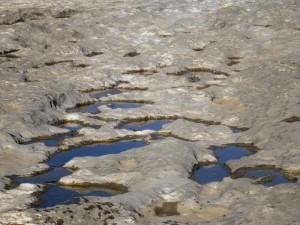 McKinney Falls Rock