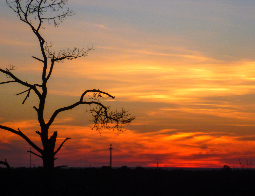 Sunset from the overlook at Bastrop State Park